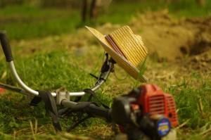 grass-cutting-828544_1280