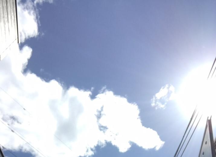 本日は東京都練馬区、明日は千葉県!海です